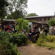 The Garden Where the Dharma Grows